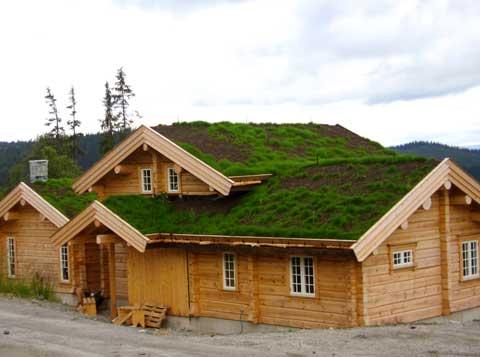 Maisons et chalets nature fustes plein coeur for Maison rondin bois tarif